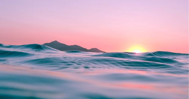 Riding the wave of a new business landscape